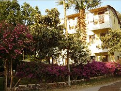 Patara - Flower Pension
